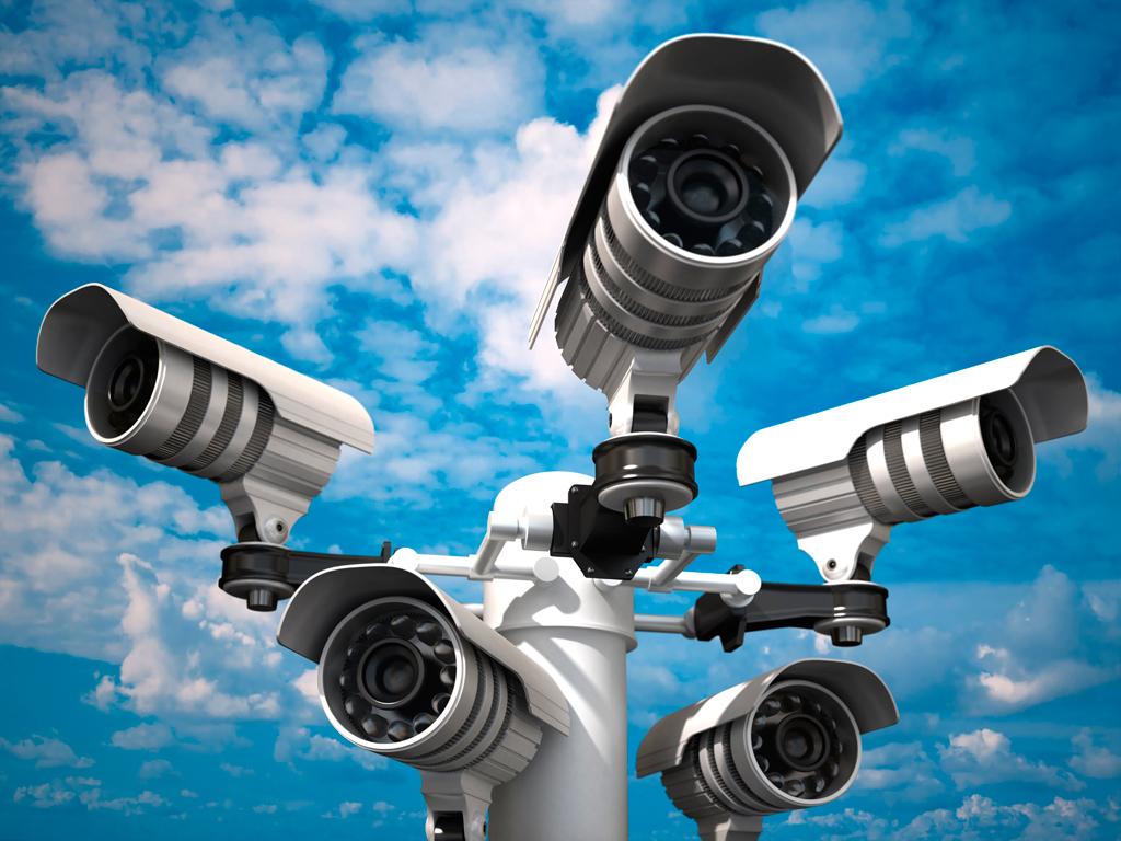 surveillance camera tree